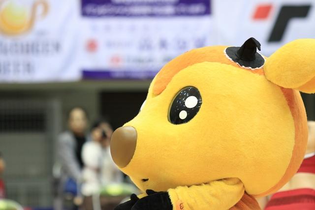 2018/10/28 愛媛オレンジバイキングス戦 ハロウィン シカッチェ - 1