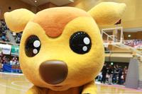 2014/03/23 対琉球ゴールデンキングス戦のシカッチェ