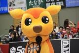 2018/10/21 アースフレンズ東京Z戦 シカッチェ - 1