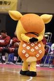 2021/10/24 対熊本ヴォルターズ戦 シカッチェ - 5